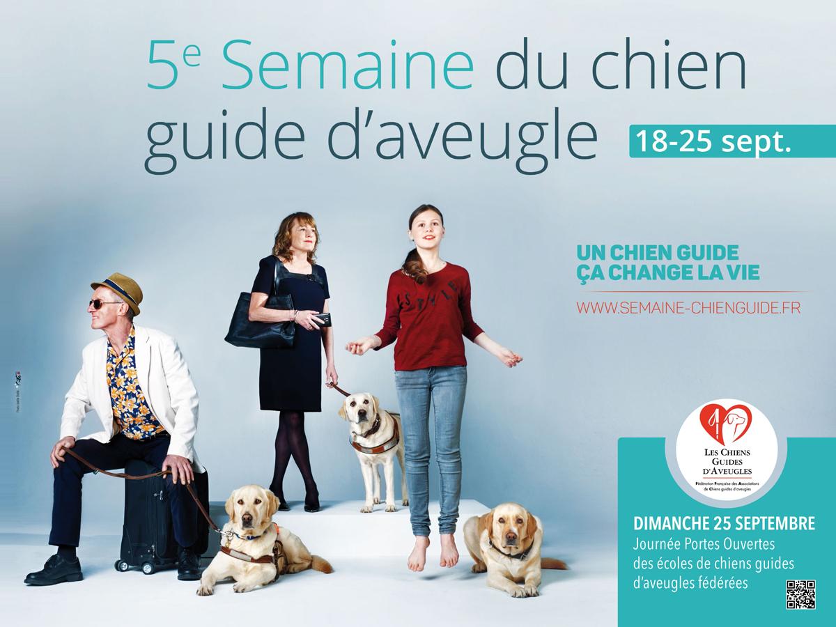 FFAC chiens guides - Cito